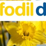 Volunteers Needed For Daffodil Day 2015
